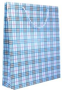 Imagen de Bolsa de regalo grande,en papel satinado, PACK x12