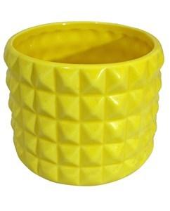 Imagen de Maceta de cerámica x6 colores distintos, en caja