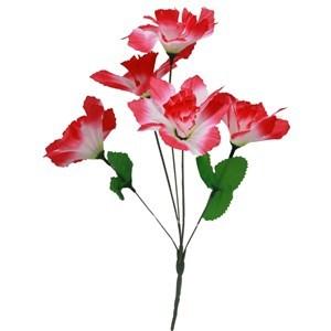 Imagen de Ramo 5 rosas abiertas, varios colores, PACK x5 ramos