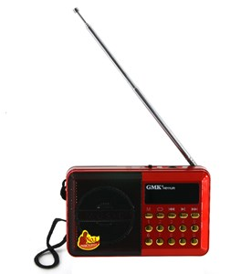Imagen de Radio digital FM con batería recargable, conexión USB y tarjeta de memoria, en caja