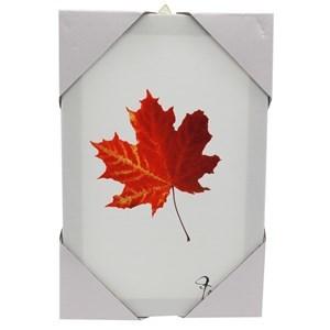 Imagen de Cuadro de PVC, rectangular, varios diseños de hojas