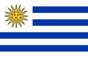 Imagen de Bandera común chica, URUGUAY