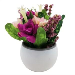 Imagen de Planta con flores maceta lisa, en caja, varios colores